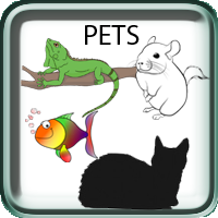 Pets, Cats, Aquairum