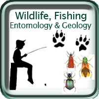 Wildlife, Fishing, Entomoloty & Geology