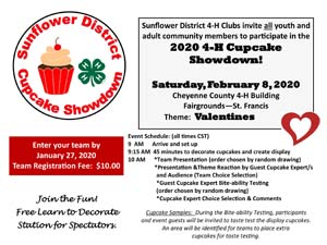 2020 Cupcake Showdown